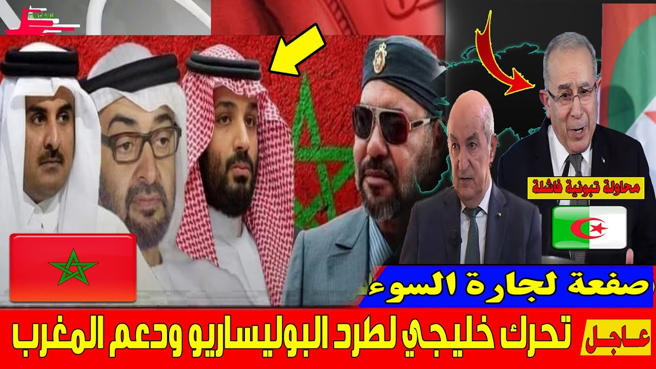 عاجل .. دول الخليج تتحرك لطرد البوليساريو وتضغط على الجزائر لانهاء تنمرها على المغرب !