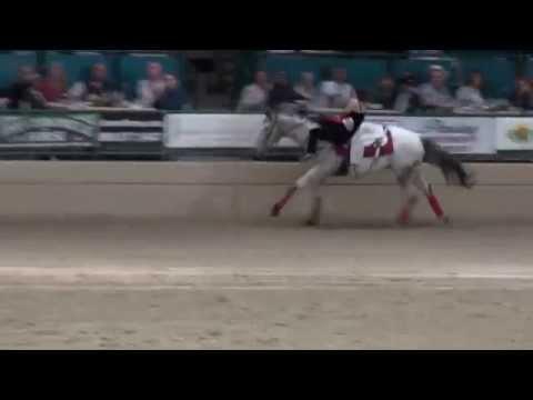Riata Ranch Cowboy Girls - Night of the Horse 2014