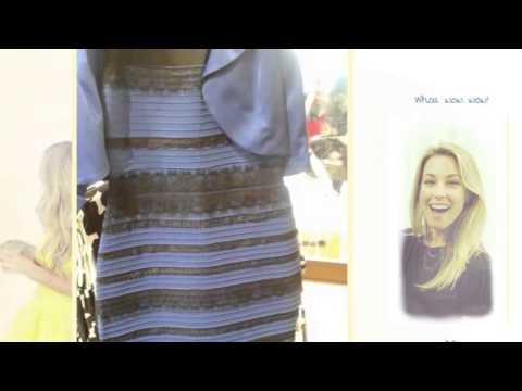 Kleid Blau Schwarz Weiß Gold Test