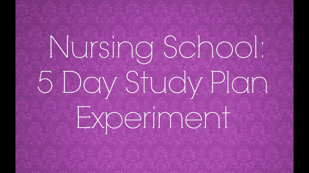nursing school 17 5 day study plan experiment
