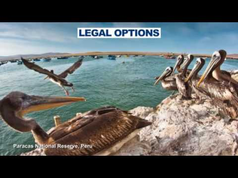 PROTECTED AREAS LAW Module 10 & 11   Marine Protected Areas