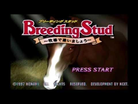 Plazethrough: Breeding Stud (PS1)