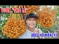 Nguyen Tran - YouTube