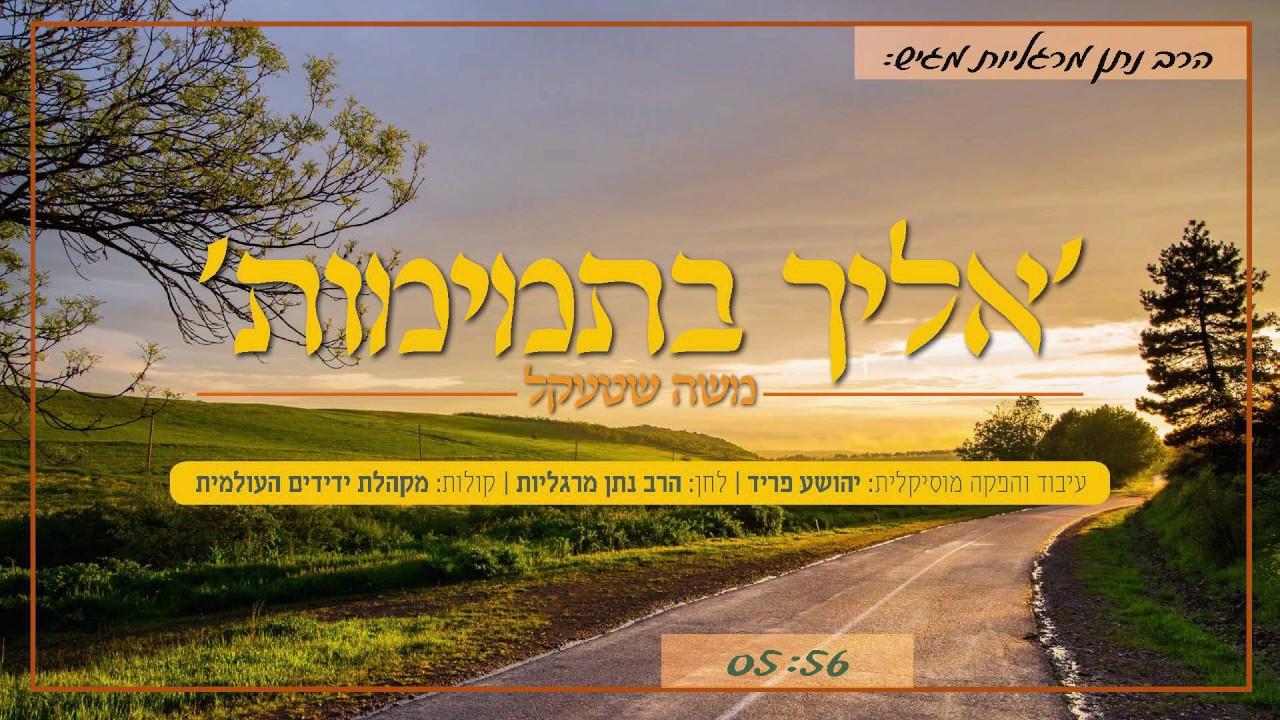 אליך בתמימות - משה שטעקל & מקהלת ידידים העולמית | Eilecha Bitmimus - Moshe Shtekl & Yedidim Choir