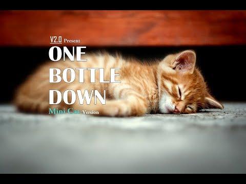 'One Bottle Down'  Yo Yo Honey Singh | Mini Cat Version | V2.0