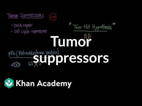 Tumor suppressors   Biomolecules   MCAT   Khan Academy