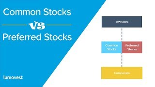 Common Stocks vs Preferred Stocks | Similarities and Differences