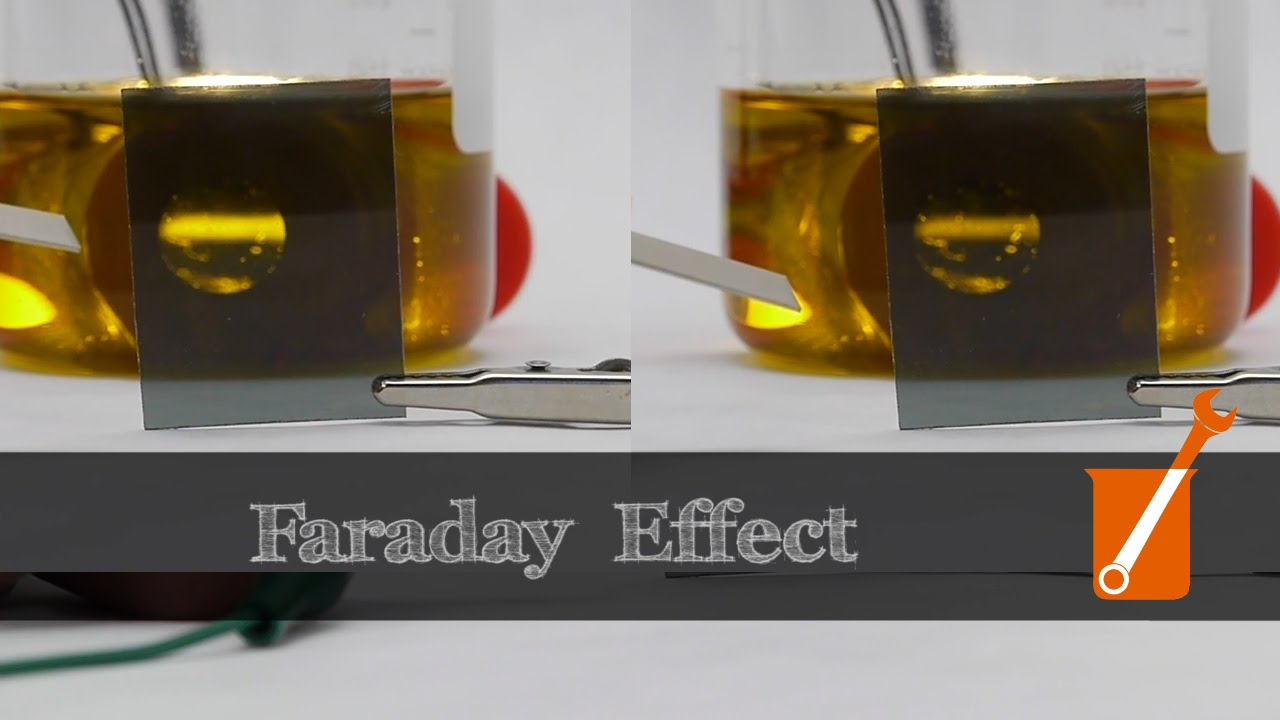 Control light with magnets and olive oil?! (Faraday effect)