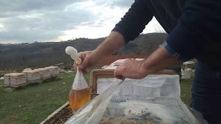 19 Ocak 2019 arılara poşetle şurup vermek