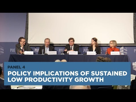 Policy Implications of Sustained Low Productivity Growth: Panel 4