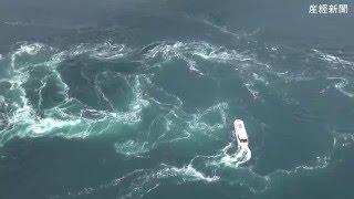 世界最大級の渦潮で知られる徳島県鳴門市の鳴門海峡で27日、春の観光...
