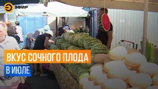 Казанские врачи заявили, что не стоит торопиться с покупкой арбузов