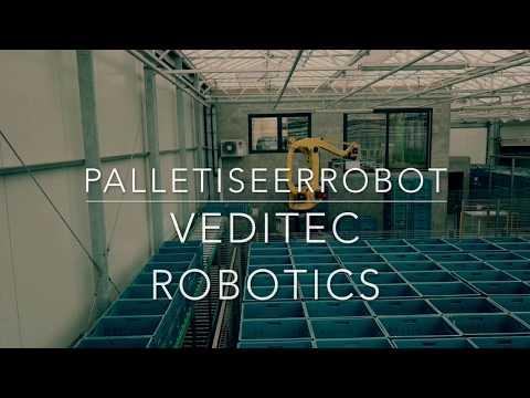 Palletiseerrobot stapelen en