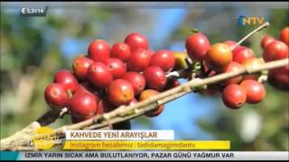 Norm Coffee - Cihangir - Vedat Milor 9 Ekim 2015
