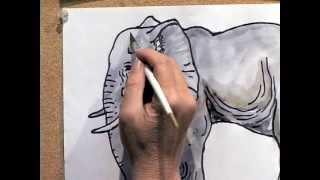 How to Draw an Elephant by Jan Brett