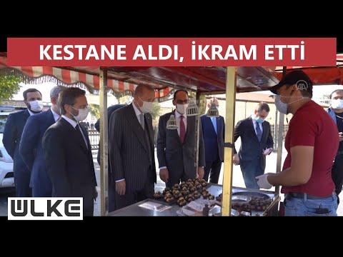Cumhurbaşkanı Erdoğan Barbaros Hayrettin Paşa İskelesi'ne yürüdü, esnafla sohbet etti