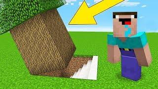 Minecraft Battle - NOOB vs PRO : HOW NOOB FOUND THIS SECRET BASE UNDER TREE ? (Animation)