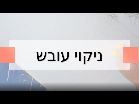 ניקוי עובש