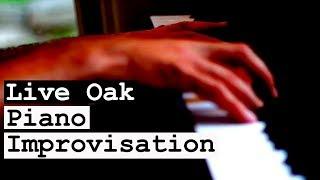 Live Oak Piano Improvisation