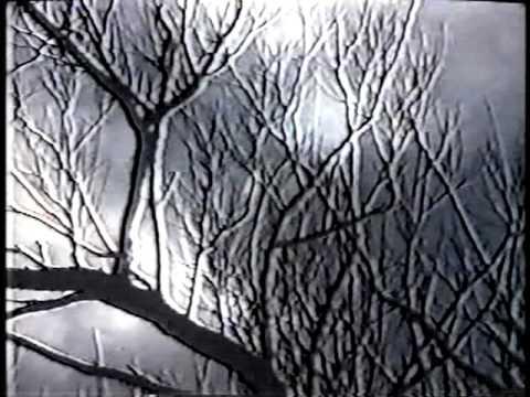 Béla Bartók (documentary-biography) - Part 3