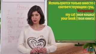 Грамматика английского языка: Притяжательные местоимения