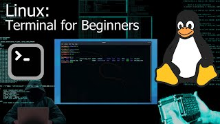 Kali Linux Terminal / Coṁmand Line for Beginners (Tutorial)
