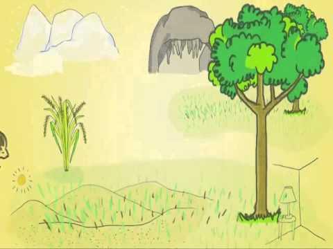 Unduh 63 Gambar Kartun Hewan Dan Bunga HD Terbaru