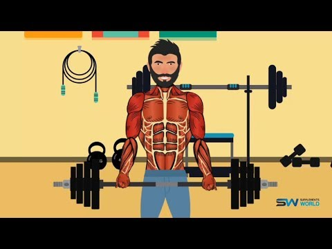 3 steps to building a body you can be proud of - Продолжительность: 4:38