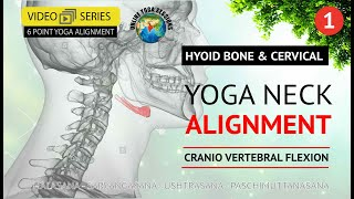 Yoga Neck Alignment | Hyoid Bone & Cervical | Part 1