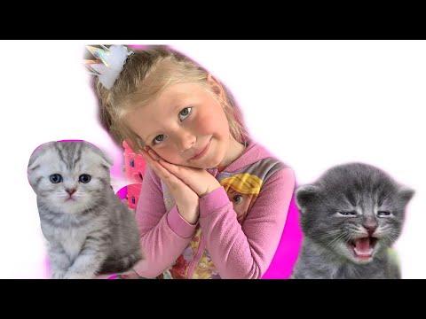 Алисия и ее обычный день с балованными котятами