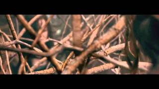 Repeat youtube video Evil Dead (2013) - Tree Rape scene