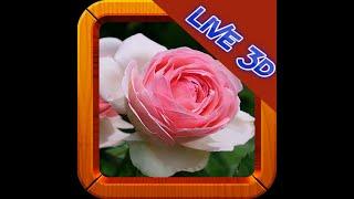 Flower Wallpaper Live 3D screenshot 4