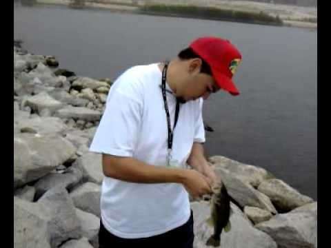 Perris lake bass fishing youtube for Lake perris fishing report