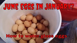 Preserving your Homestead egg harvest for the whole year round: water glassing eggs