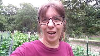 End of July GARDEN TOUR