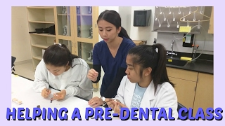 Volunteering at a Pre-Dental Class: First Year Dental School || Brittany Goes to Dental School