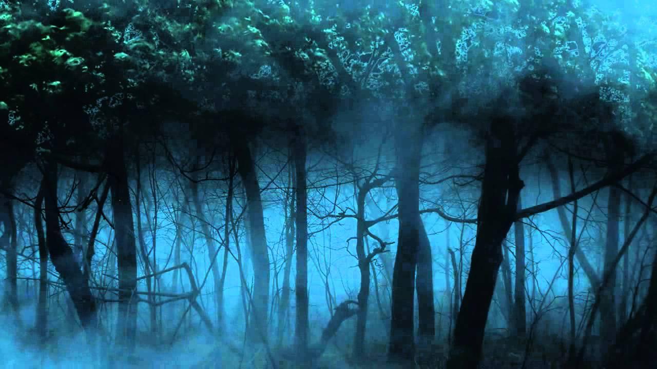 BACKGROUND LOOP DARK FOREST - YouTube