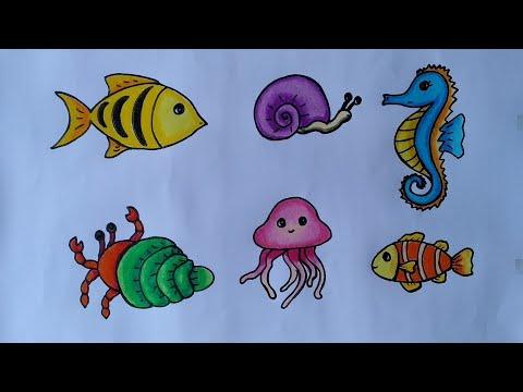 Cara menggambar macam macam hewan laut || menggambar dan mewarnai hewan laut
