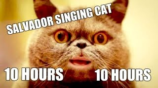 Поющий кот Сальвадор / Salvador singing cat [10 HOURS VERSION](Original video: http://www.youtube.com/watch?v=yw4i7sGAtgw., 2012-08-29T08:21:29.000Z)