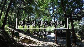 [휴양림 리뷰] 천관산…