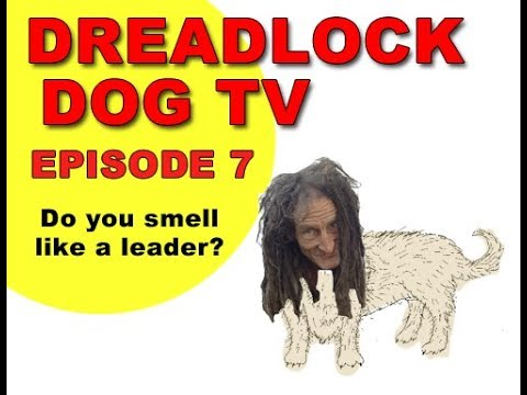 Episode 7   Do you smell like a leader?