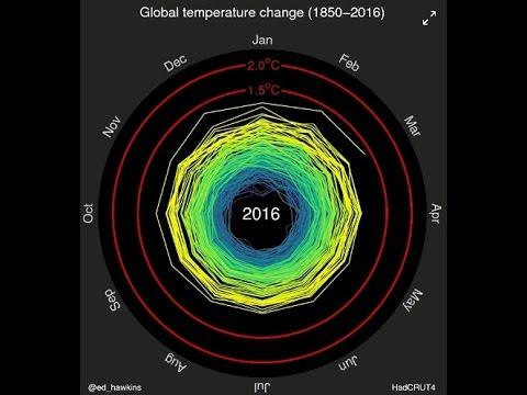 Sea Ice Gains, Oceans Cool NOAA Caught Lying | Mini Ice Age 2015-2035 (228)