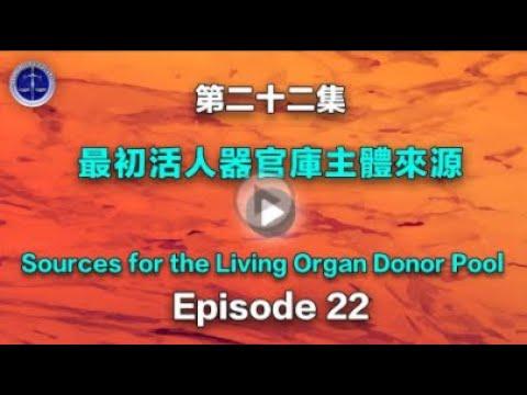 【铁证如山系列讲座】第22集 最初器官活人供体库主体来源