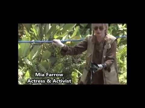 The Dirty hand of Chevron - the destruction in Ecuador
