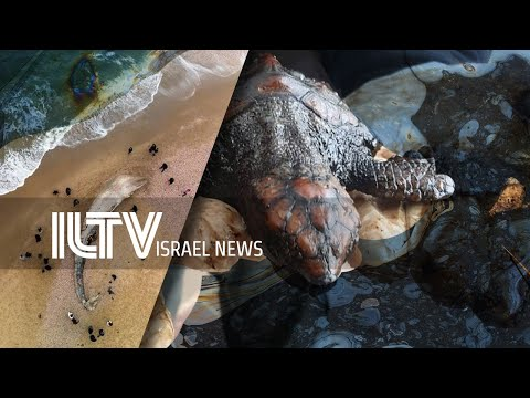Your News From Israel- Feb. 22, 2021