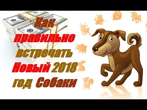 As it is correct to meet New 2018 of the Yellow Earth Dog of
