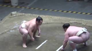 20170503 大相撲夏場所 稽古総見 横綱鶴竜vs豪栄道など.