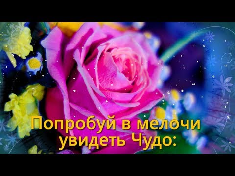 Пожелание доброго утра...