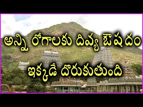 Unknown Facts About Arunachalam Temple | Thiruvannamalai Temple History | Tamil Nadu