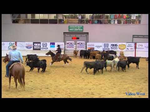 2016 NCHA Eastern Nationals Open - Stylishlittlesister
